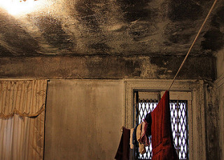 Black mold, an asthma trigger, covers the walls of many apartments in the Bronx. Photo: Rachel Bryson-Brockman