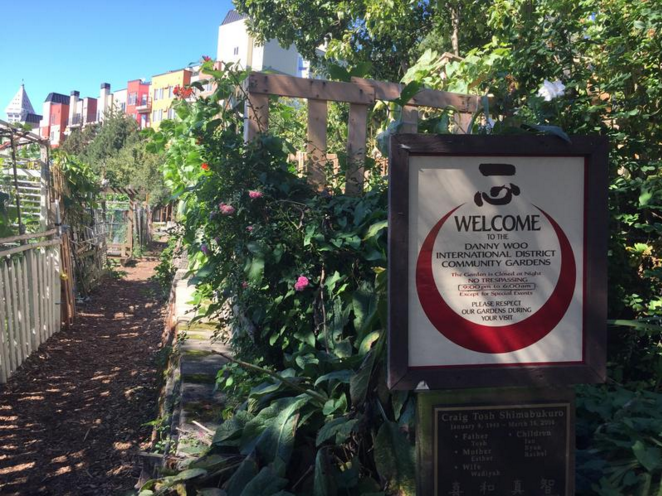 Seattle, WA - Community Garden